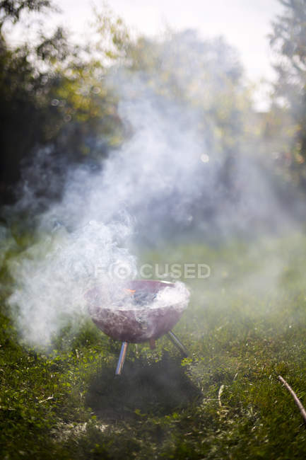 Smoking barbecue grill in garden — Stock Photo