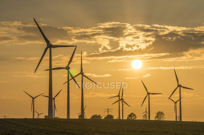Wind farm silhouettes at sunset — Stock Photo