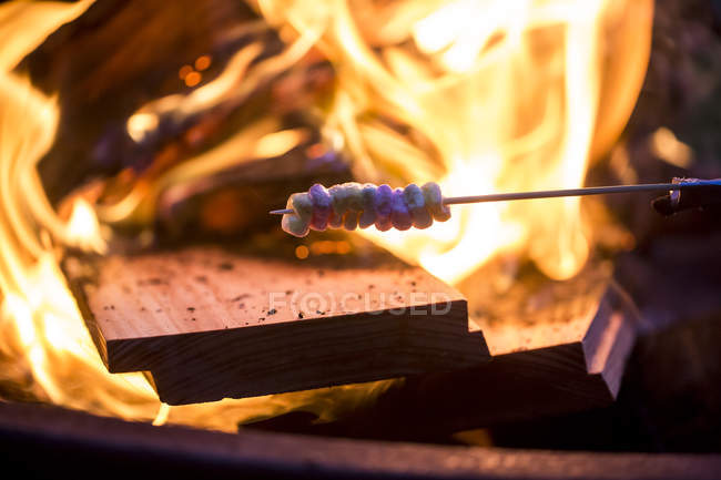 Bonfire and skewer with marshmallow — Stock Photo