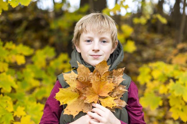 Retrato de niño sosteniendo racimo de hojas de otoño - foto de stock