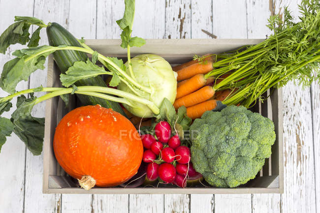 Wooden box of different fresh picked vegetables — Stock Photo