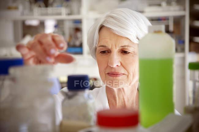 Старшая женщина работает в химической лаборатории — стоковое фото