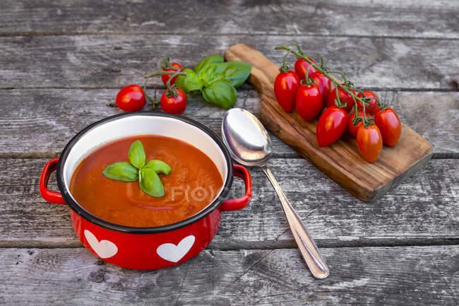 Котелок домашний томатный суп с помидорами на дереве — стоковое фото