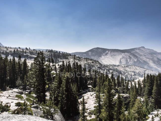 Paysage de montagne dans le Parc National de Yosemite, Californie, é.-u. — Photo de stock