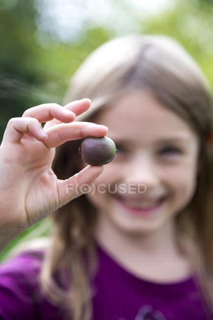 Closeup view of girl hand holding hardy kiwi — Stock Photo