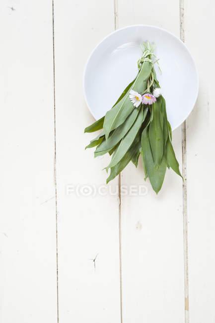 Vue de dessus des tas de frais ramson et marguerites sur plaque — Photo de stock