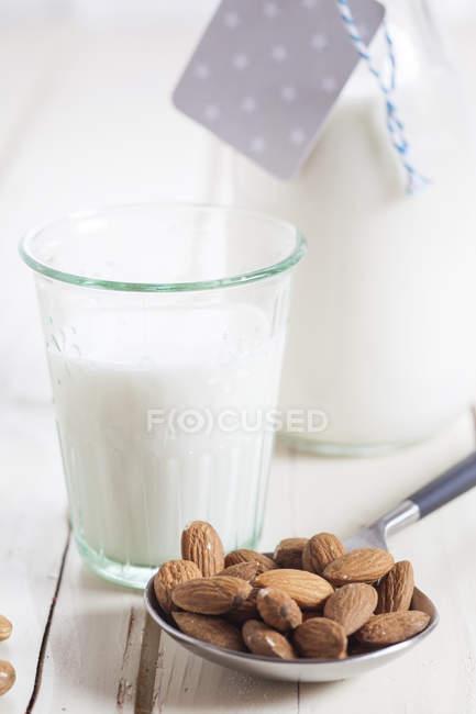 Glas und Karaffe hausgemachte Mandelmilch und Mandeln — Stockfoto