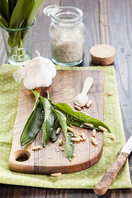 Vue des ingrédients pour le pesto de RO — Photo de stock