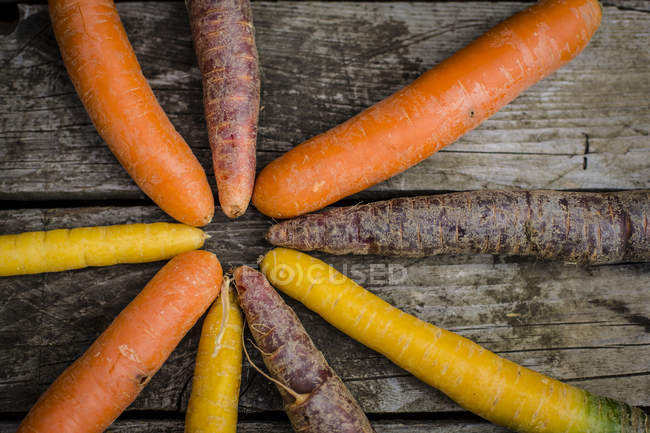 Different sorts of fresh carrots on dark wood — Stock Photo