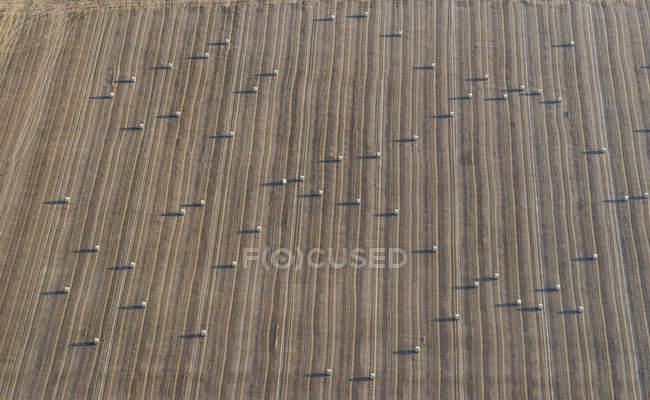 Alemanha, Baixa Saxônia, Hildesheim, vista aérea de fardos de palha no campo — Fotografia de Stock