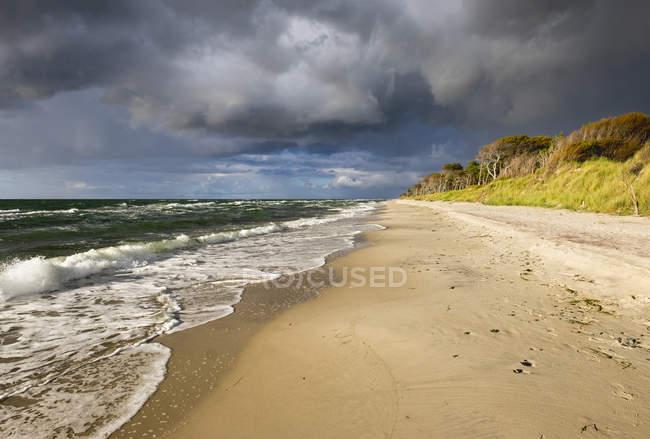 Вид на пляж Балтийского моря в Борн-де-Дарсс, Западная Померания, Германия — стоковое фото