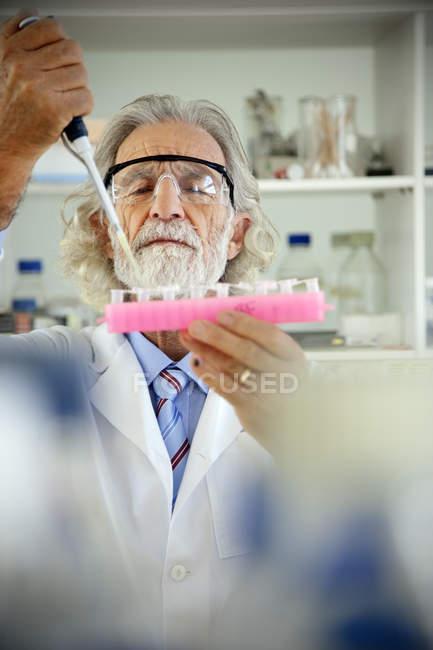Старший професор заповнення зразок келихи у лабораторії — стокове фото