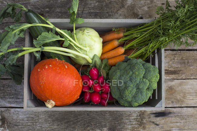 Wooden box of different fresh picked vegetables on dark wood — Stock Photo