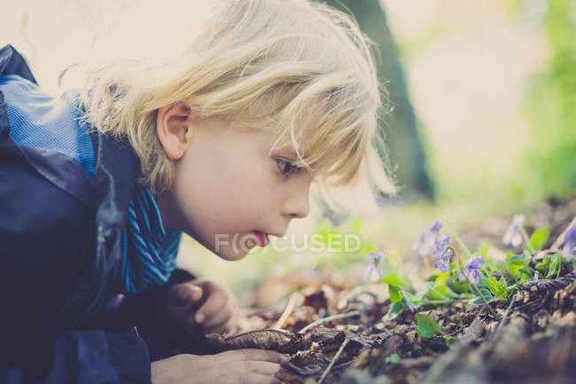 Boy scrutinizing plants on the ground — Stock Photo
