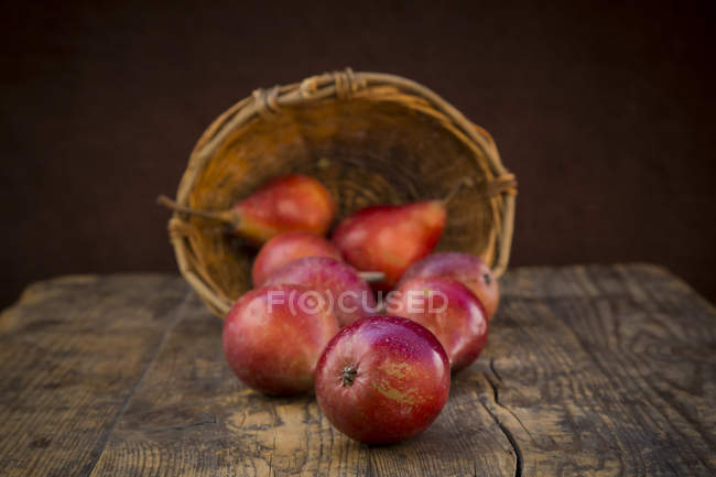Basket and organic red apples — Stock Photo