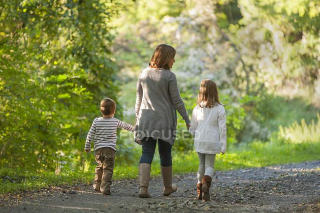 Visão traseira da mãe andando com seus filhos na trilha florestal — Fotografia de Stock