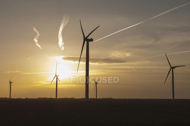 Нидерланды, Зеландия, ветряные турбины на закате — стоковое фото
