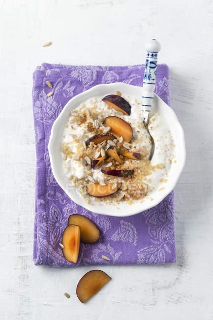 Ciotola di latte acido con quinoa, prugne, semi di girasole e cannella — Foto stock