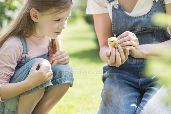 Mãe e filha com seus pintinhos ao ar livre — Fotografia de Stock
