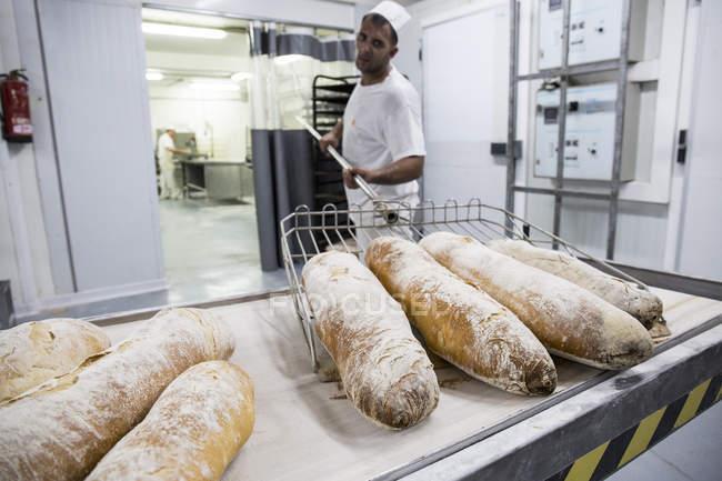 Baker, tirando fuori il pane appena sfornato dal forno della panetteria — Foto stock