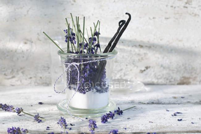 Copo de açúcar de lavanda com flores de avender e feijões de baunilha — Fotografia de Stock