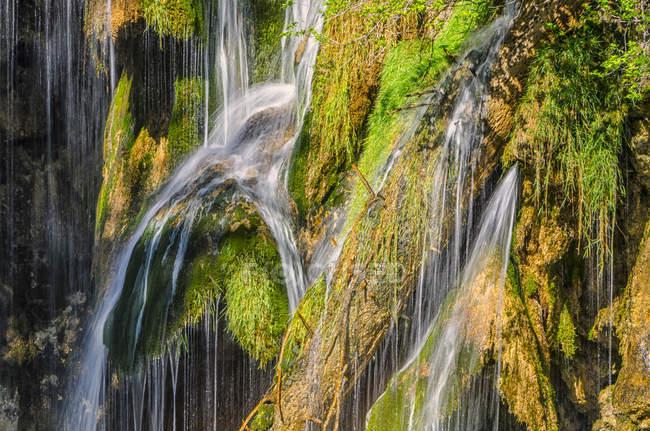 Musgos en rocas y cascada natural - foto de stock