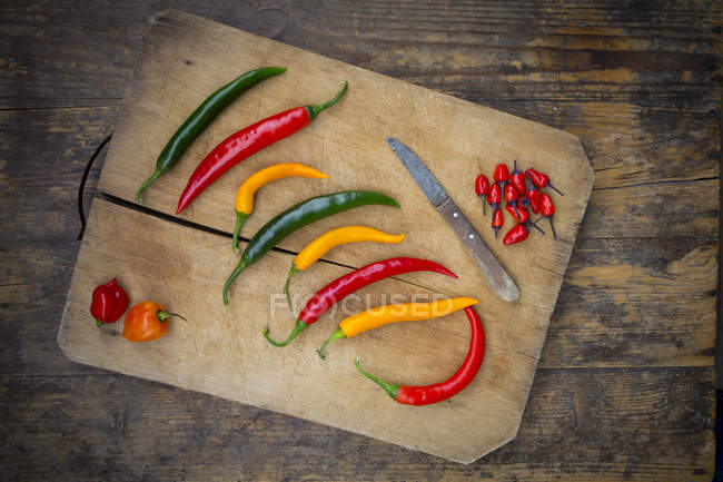 Peperoncini colorati — Foto stock