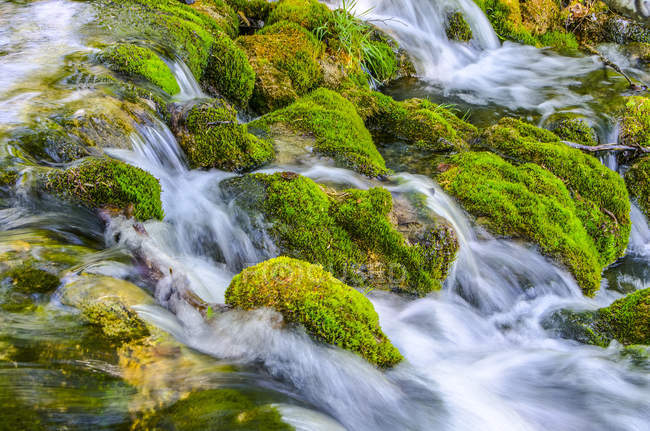 Croacia, Parque Nacional de Plitvice, cascada en rocas con musgo - foto de stock