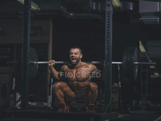 Bodybuilder, die Durchführung Kniebeugen mit einer Langhantel im Fitness-Studio — Stockfoto