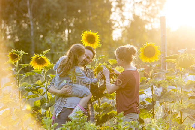 Happy family of three standing in sunflower field — Stock Photo