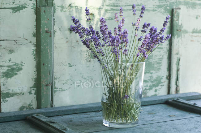 Bunch of lavender in glass flower vase — Stock Photo