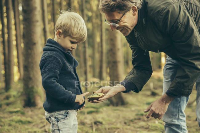 Älterer Mann sammelt mit kleinem Jungen Steinpilze — Stockfoto
