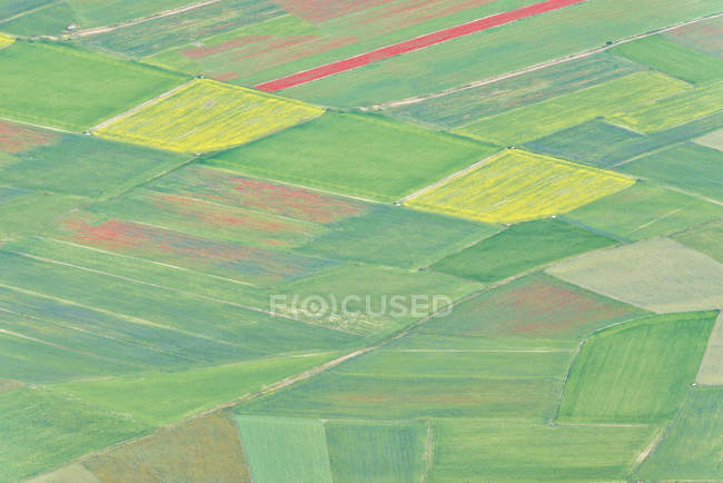 Italy, Umbria, Monti Sibillini National Park, Aerial view of the fields on Piano Grande of Castelluccio di Norcia during the blooming — Stock Photo