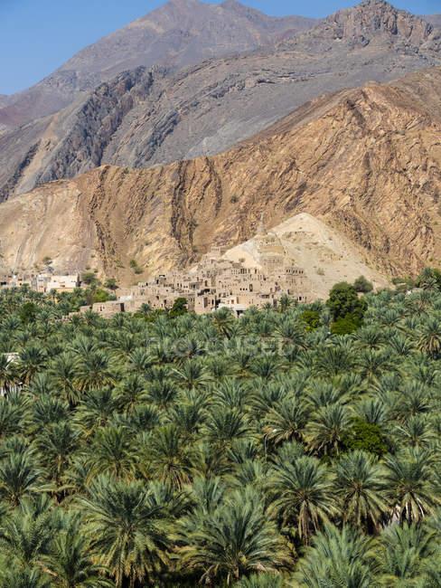 Оман, Ад-Дхакилия, Аль-Хаджар аль-Гарби, горная деревня Биркат аль-Мауз — стоковое фото