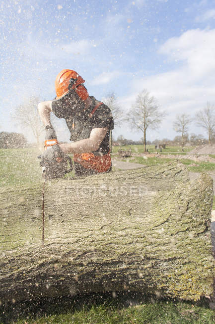 Lumberjack sawing tree trunk wearing helmet and protective mask — Stock Photo