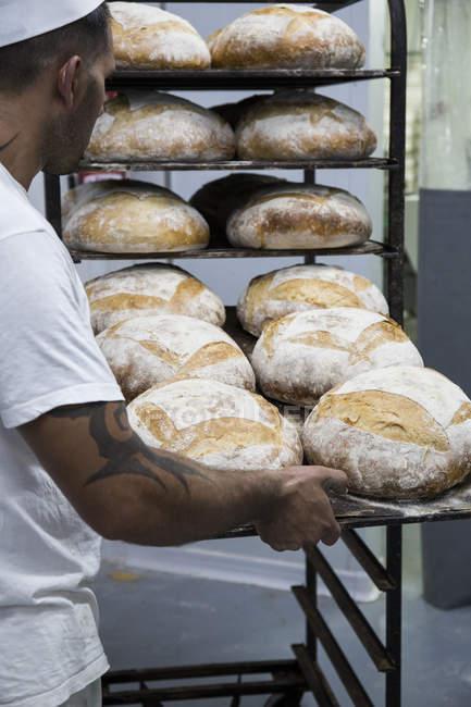 Baker immissione vassoio di pane nel forno — Foto stock