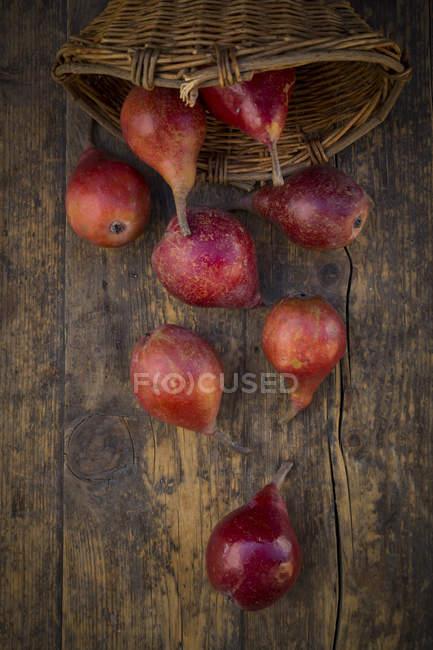 Orgânicos vermelho Clapp favorito na superfície de madeira escura — Fotografia de Stock