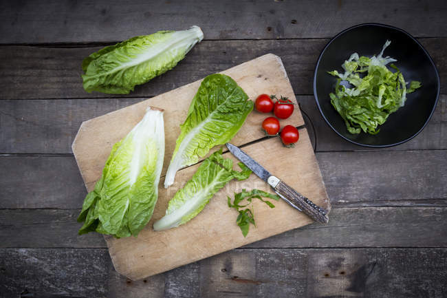 Lattuga di romaine tritato e intero — Foto stock