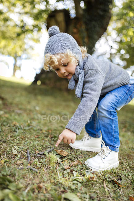 Little boy pointing on sweet chestnut lying on a meadow — Stock Photo