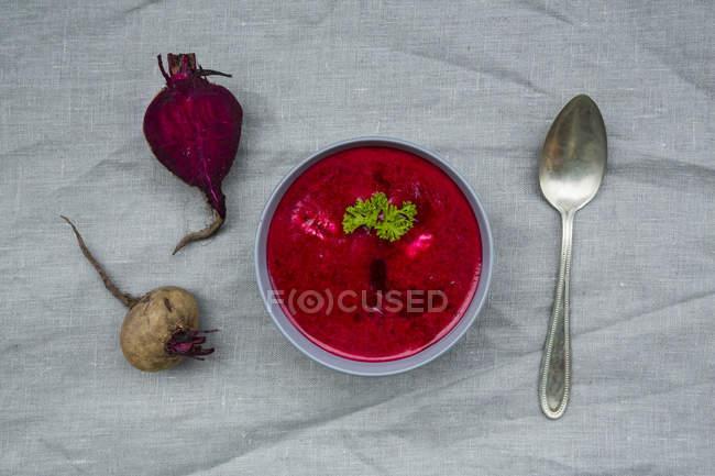 Close-up da tigela de sopa de beterraba — Fotografia de Stock