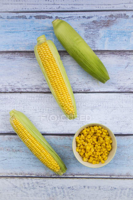 Organic corncobs and maize in bowl on white wood — Stock Photo