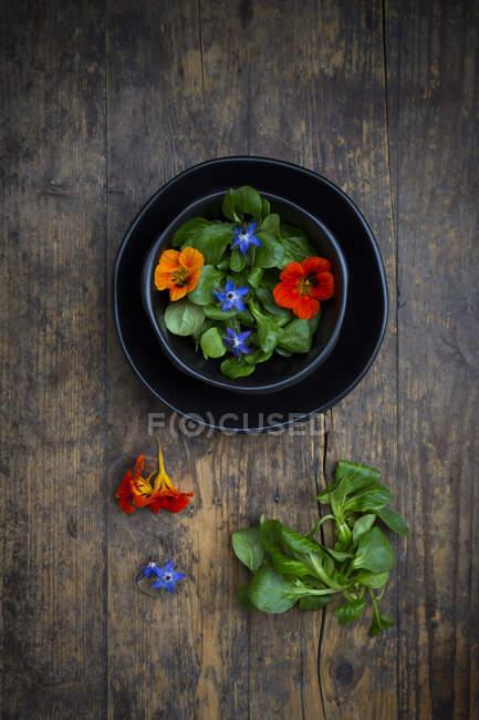Чаша салат с листьями салата, цветет бурачника и Индийского Кресса — стоковое фото