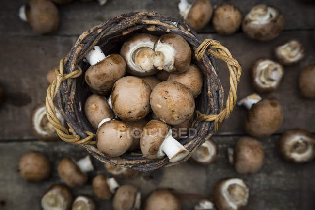 Crimini mushrooms in basket — Stock Photo