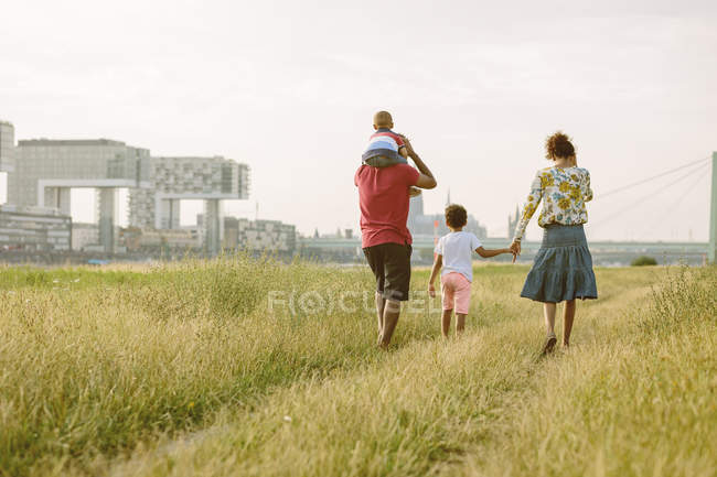 Happy african american family of four walking in field — Stock Photo
