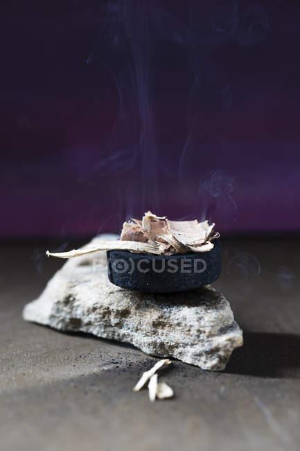 Burning cedar wood on purple background — Stock Photo