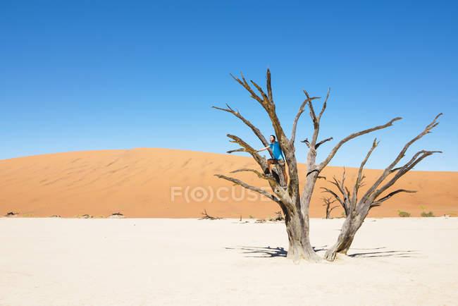 Homme de Namibie, désert du Namib, assis sur un arbre mort dans Deadvlei — Photo de stock