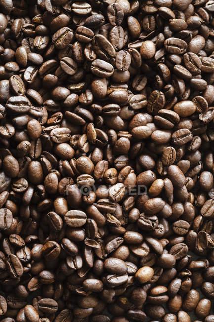 Вид зверху сушені коричневий кавових зерен фону — стокове фото
