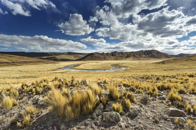 Perù, Arequipa, Altiplano, Pasto Grande e suggestivo paesaggio naturale con secco terreno disabitato e montagne su priorità bassa — Foto stock