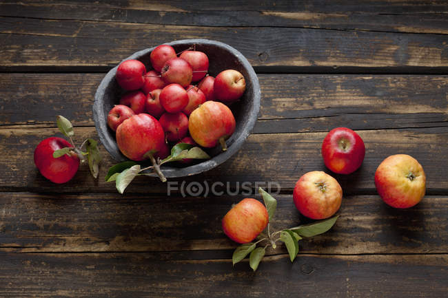 Bowl of different sorts of red apples — Stock Photo