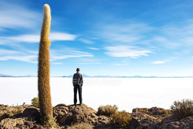 Bolivia, Potosí, hombre mirando en el Salar de Uyuni - foto de stock